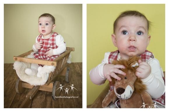 babybilder-in-wien-korneuburg-und-umgebung-3
