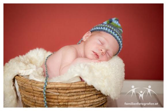 Newborn Fotografie Langenzersdorf-04