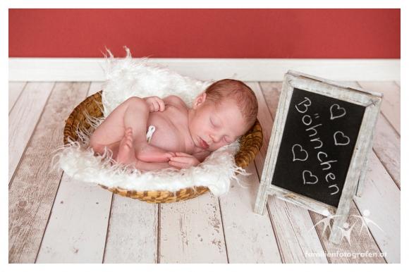 Newborn Fotografie Langenzersdorf-09
