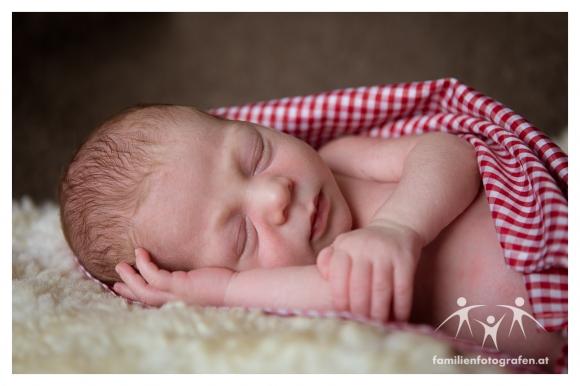 Newborn Fotografie Langenzersdorf 1