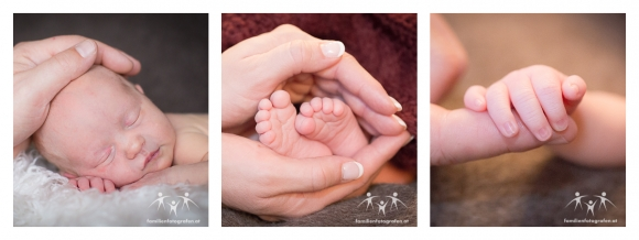 Newbornfotos-2