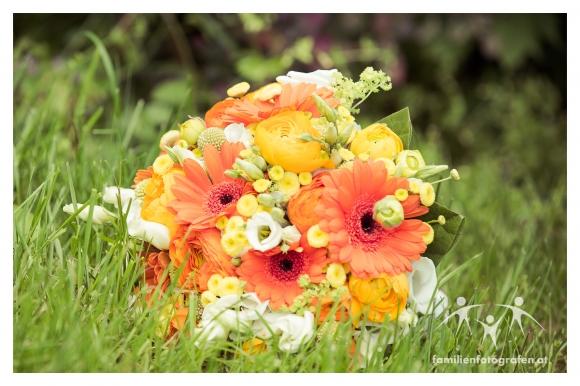Hochzeit Veranstaltungshalle Ernstbrunn Fotograf-21