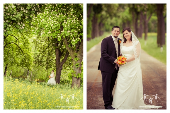 Hochzeitsfotos Göllersdorf-5
