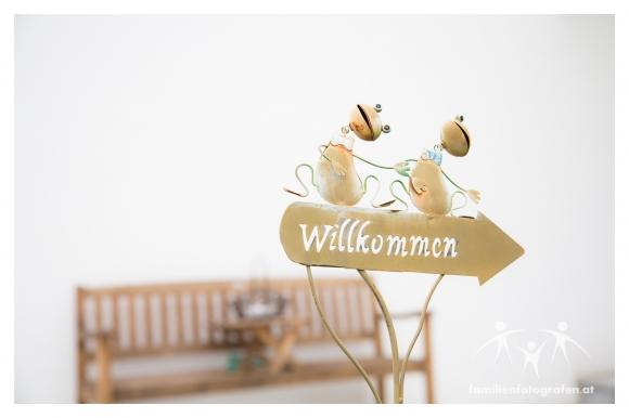 Breitenwaida Hausleiten Hochzeit-01